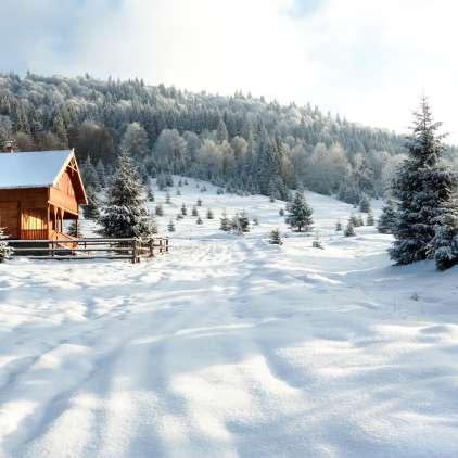 Ljudske modrosti: vklenjeni bomo v sneg