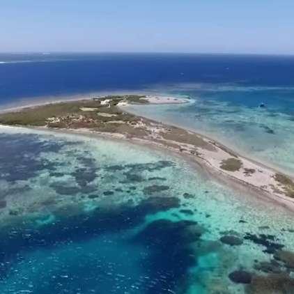 VIDEO: Na otoku groze izkopali več kot sto okostij