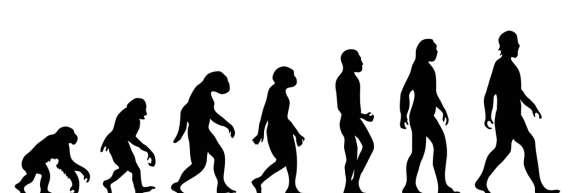V Turčiji bi odpravili poučevanje Darwinove teorije evolucije v šolah