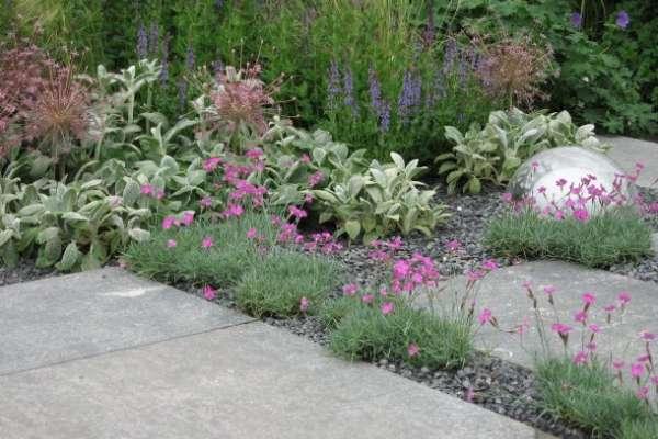 Pravi prostor za pravo rastlino (1. del)