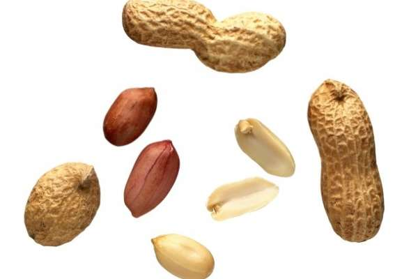 Zemeljski oreški – arašidi