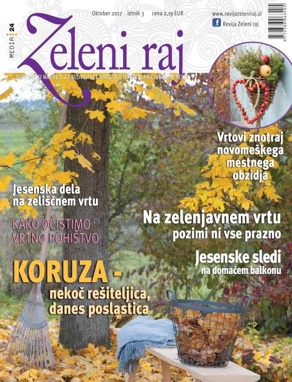 Revija št. 8