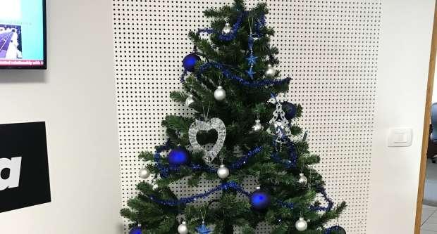 FOTO: Veseli december na Krki