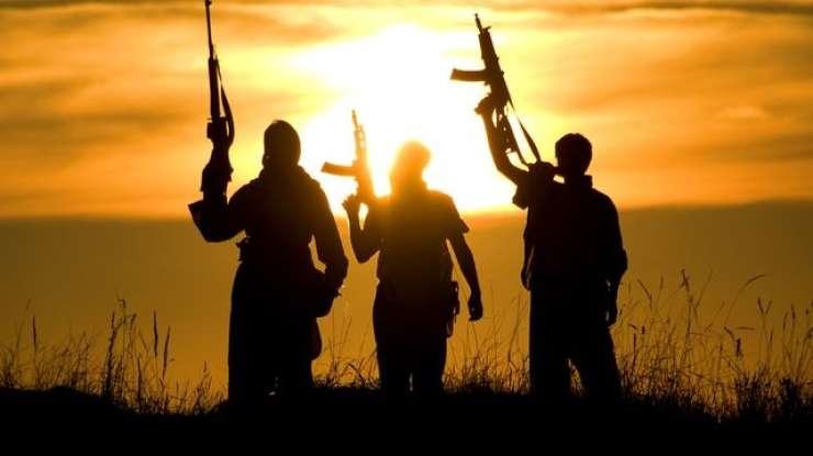 Nizozemcem je tega dovolj: džihadistom so odvzeli državljanstvo
