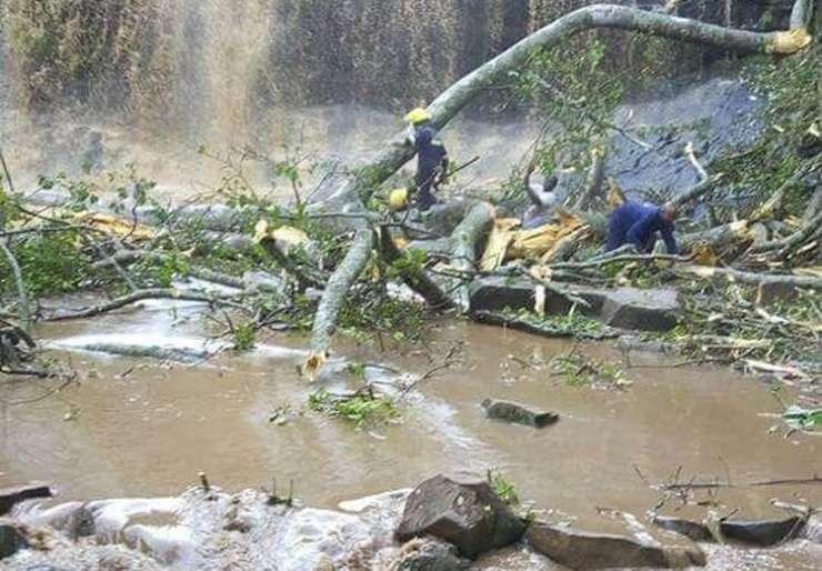 Tragedija: Drevo v neurju zmečkalo 18 šolarjev