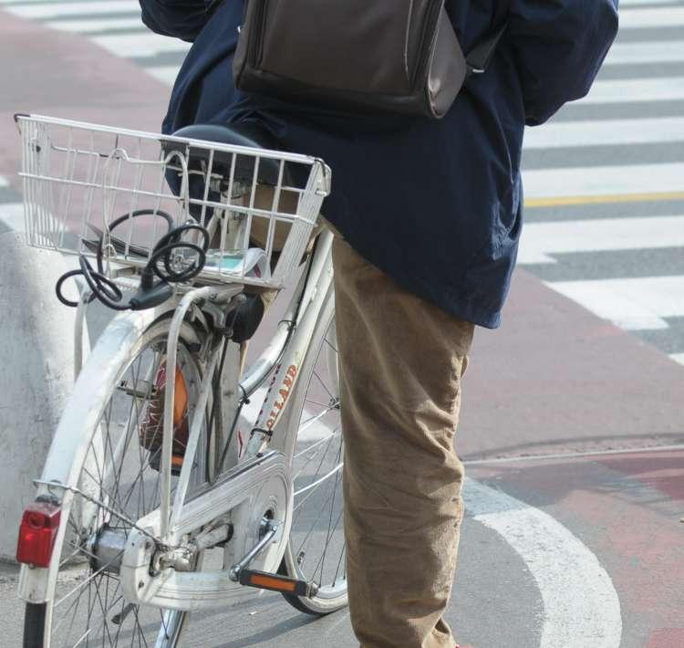 ljubljana kolesarska steza kolo
