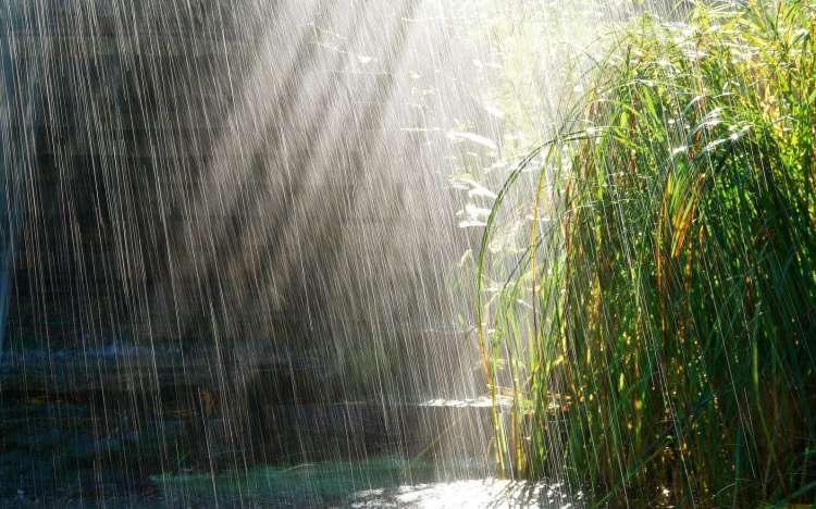 Dež, ploha, nevihta, neurje, padavine
