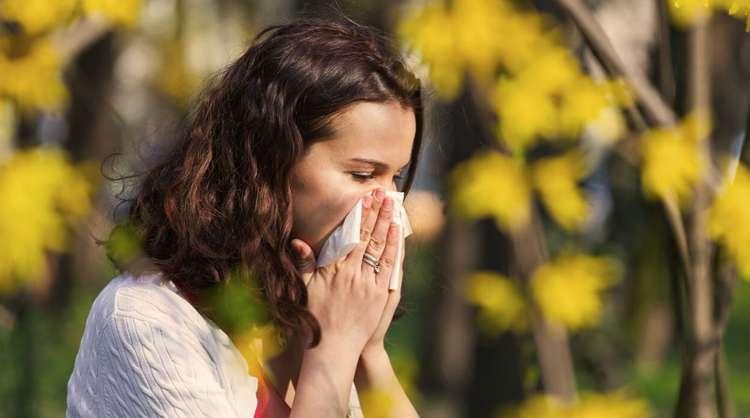 kihanje smrkanje alergija.jpg