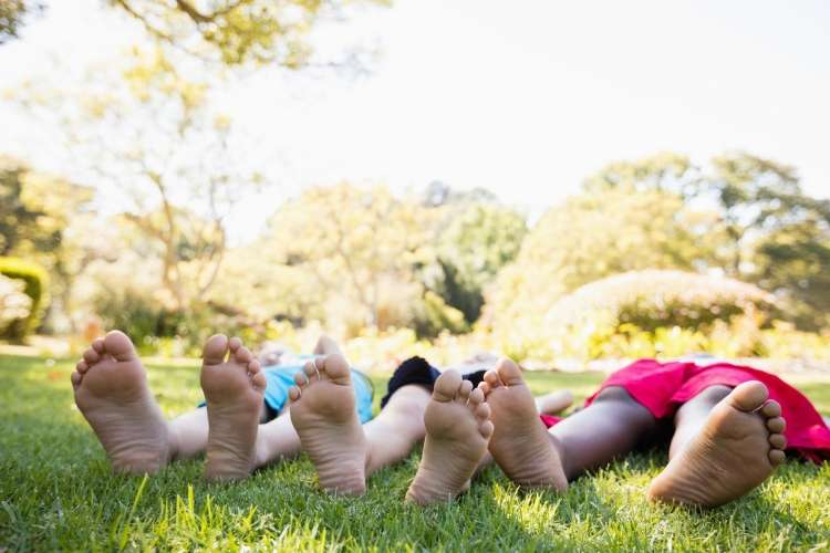 trava, ležanje, otroci, poletje