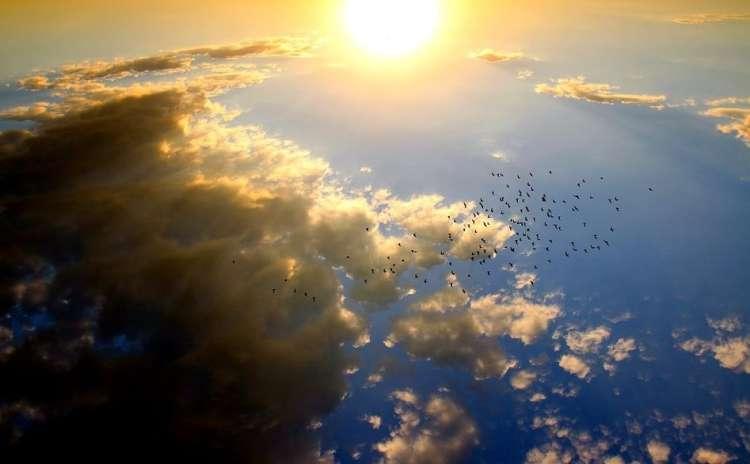 sonce nebo oblaki ptice