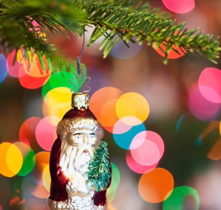 božiček jelka
