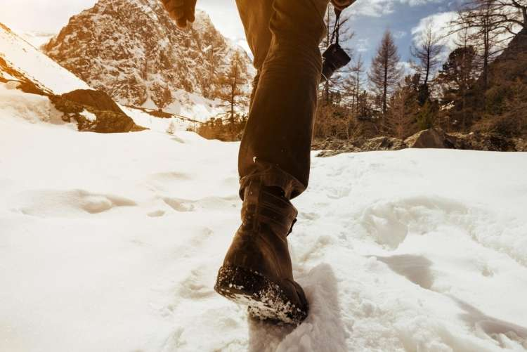 zimski teren, hoja, sneg