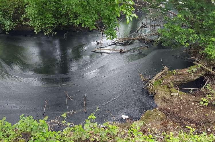 Kemična tovarna Kemis, potok, onesnaženje