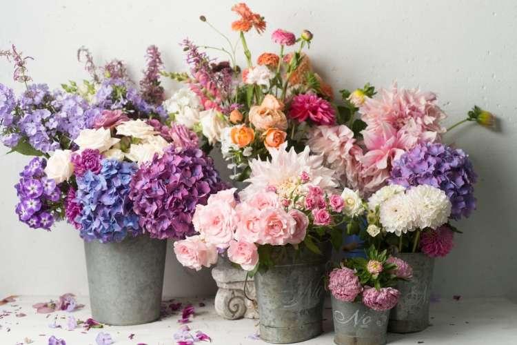cvetje, rože, vedra, šopki