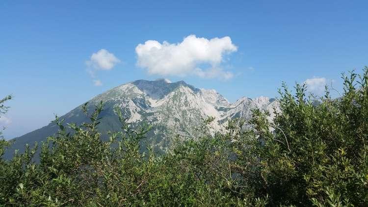 Slovenske gore so bile letos usodne za 18 oseb