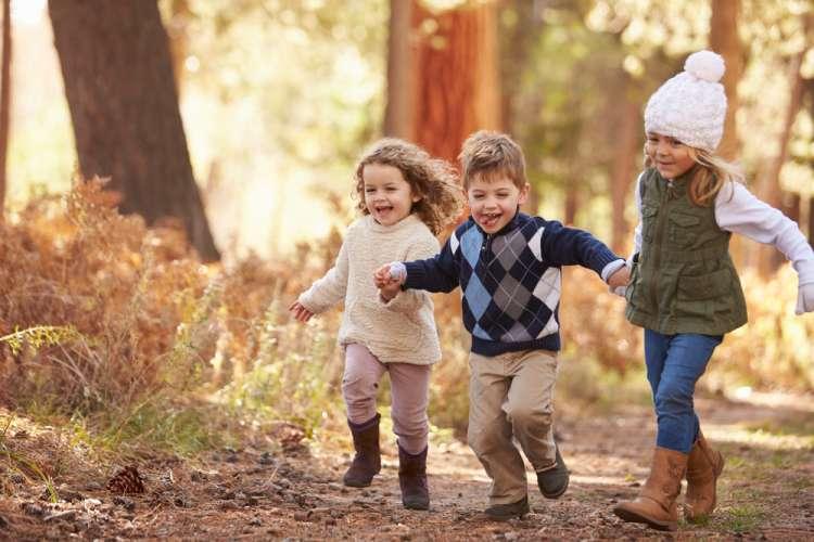 otroci, jesen, gozd