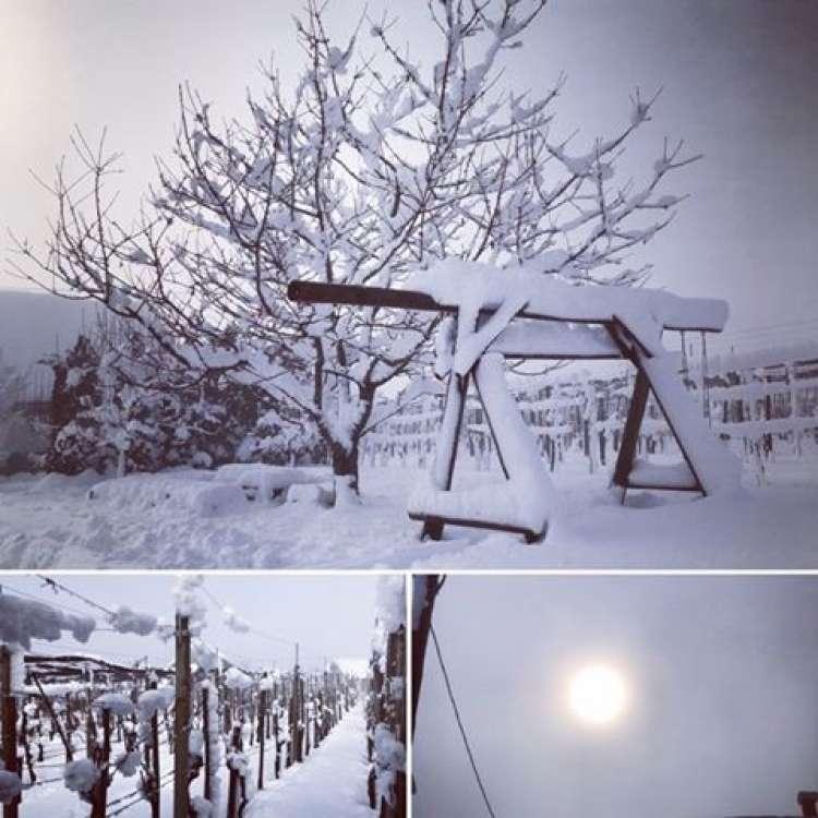 radost zimska.jpg