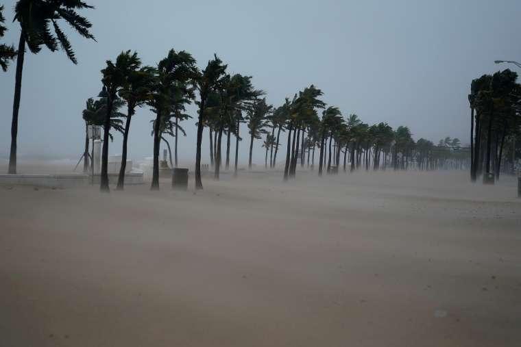 irma, orkan, florida