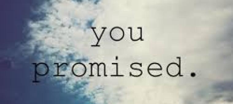 obljuba dela dolg