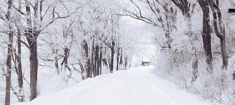 Kako najbolje izkoristiti zimske počitnice?