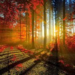 Autumn-equinox-2018-when-is-Autumn-equinox-what-is-1436393