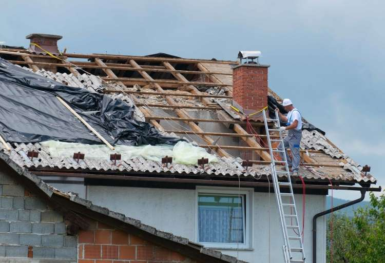 Delavec na strehi