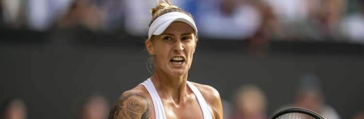 polona hercog re