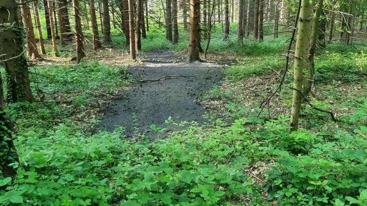 Na ministrstvu za okolje že skoraj dve leti vedo, da ima Slovenija velike težave s komunalnim blatom, a jih do danes niso rešili. Rezultat so divja odlagališča, zaradi katerih prihaja do velike okoljske škode.