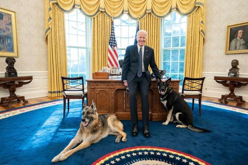 Joe Biden, Champ, Major,